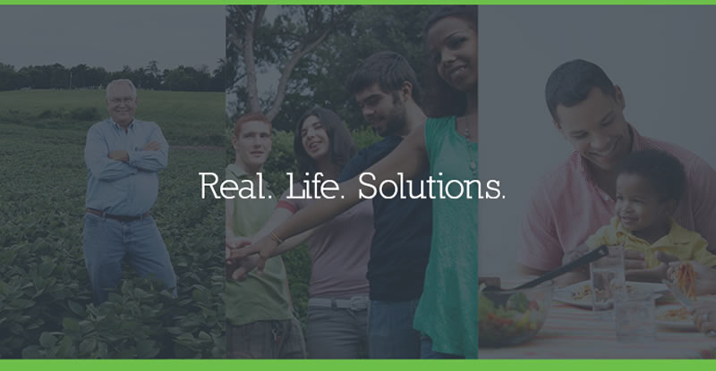 Real Life Solutions Banner